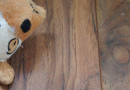 Photo Friday – Dog Toy on Hardwood Floor