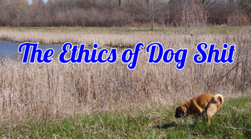 The Ethics Of Dog Shit